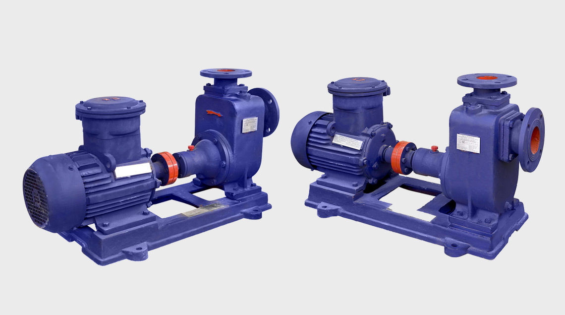 Centrifugal Pumps with Motors